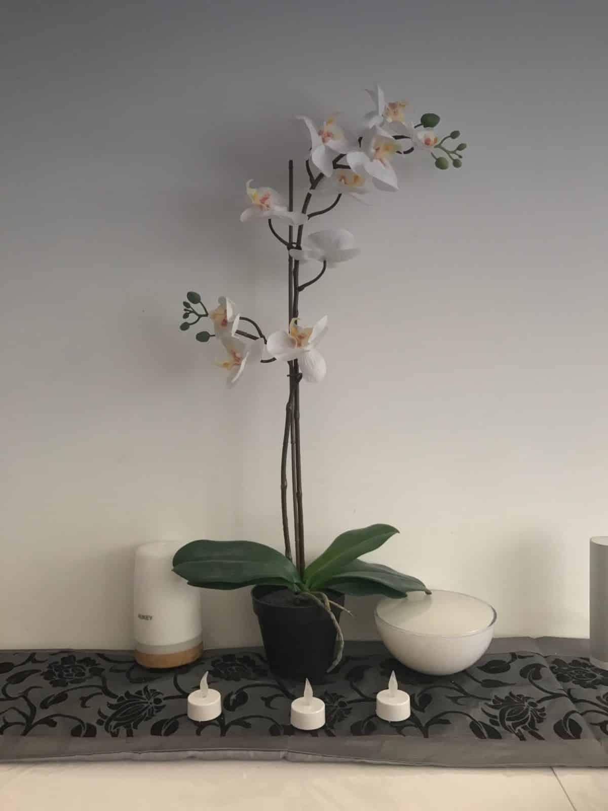 photo fleur filtre polarisé gris